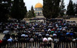 مفتي القدس: القرار الأمريكي لن يغير من واقع المدينة شيئًا