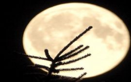 السماء على موعد مع 3 ظواهر قمرية نادرة… الأربعاء المقبل
