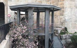الاحتلال يقيم غرفة ومنصات مراقبة عند باب العامود