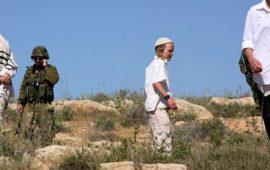مستوطنون يهاجمون مزارعين جنوب نابلس