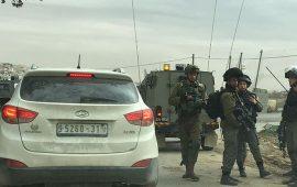 معطيات حقوقية: الاحتلال اعتقل 1319 فلسطينيًّا في يناير وفبراير