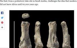 حفرية للإنسان الأول بالسعودية عمرها 90 ألف عام