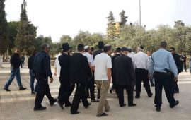 مستوطنون يقتحمون الأقصى وسط قيود مشددة على الفلسطينيين