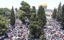 خطيب الأقصى: المسجد الأقصى للمسلمين وحدهم