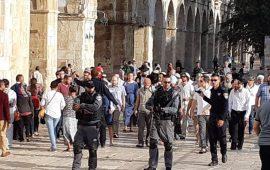 45 مستوطنا يقتحمون المسجد الأقصى