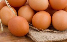 بيضة واحدة يومياً تحمي الأطفال من التقزّم ونقص الوزن