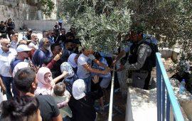 الاحتلال يمنع دخول حراس الأقصى والاحتجاج على البوابات مستمر