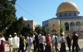 المستوطنون تحميهم قوات الاحتلال يواصلون اقتحام الأقصى