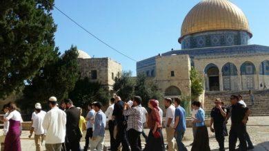 Photo of المستوطنون تحميهم قوات الاحتلال يواصلون اقتحام الأقصى