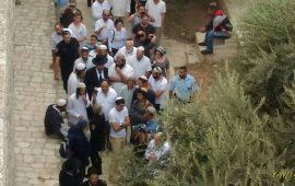 """تواصل اقتحامات المستوطنين للأقصى في """"العرش"""" والتضييق على المصلين"""
