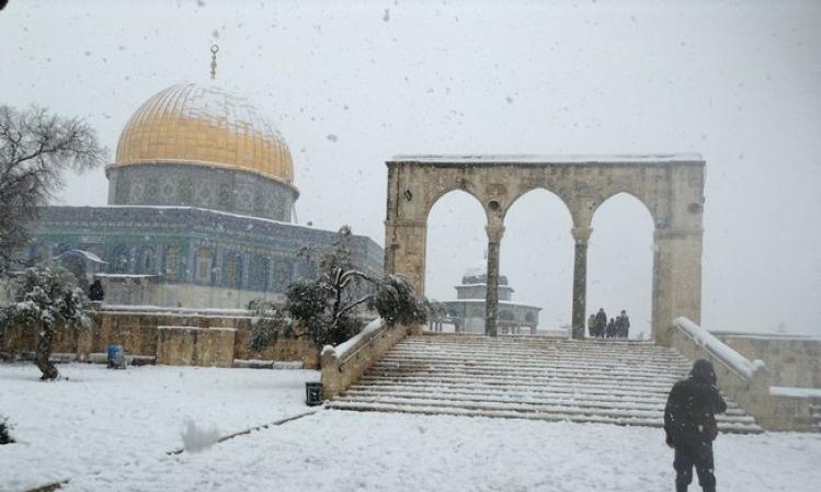 المجلس الإسلامي للإفتاء يصدر قرارات وتوصيات بخصوص الجمع بين الصّلوات بسبب المطر