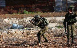 70 مؤسسة دولية تطالب بضرورة إنهاء الاحتلال الإسرائيلي