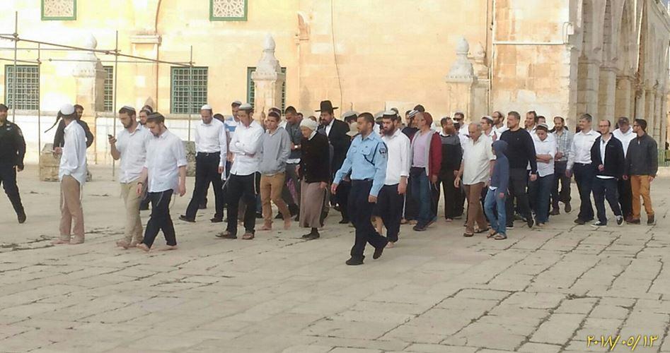 Photo of أكثر من ألف مستوطن يقتحمون الأقصى.. توتر كبير ودعوات لحماية المسجد