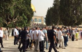 """""""العليا الإسرائيلية"""" تطالب الحكومة بتبرير منع اليهود من الصلاة بـ """"الأقصى"""""""