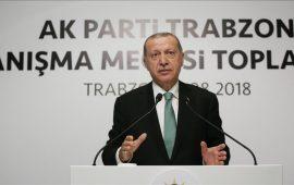 أردوغان: لا يمكن لأي دولة أو مؤسسة تصنيف ائتماني تهديد تركيا