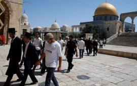 الأقصى: توتر شديد واعتقالات و 420 مستوطنا يقتحمون المسجد