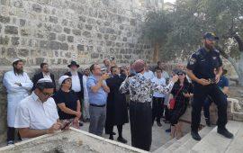 بحماية قوات الاحتلال: مستوطنون يواصلون اقتحاماتهم المكثفة للأقصى