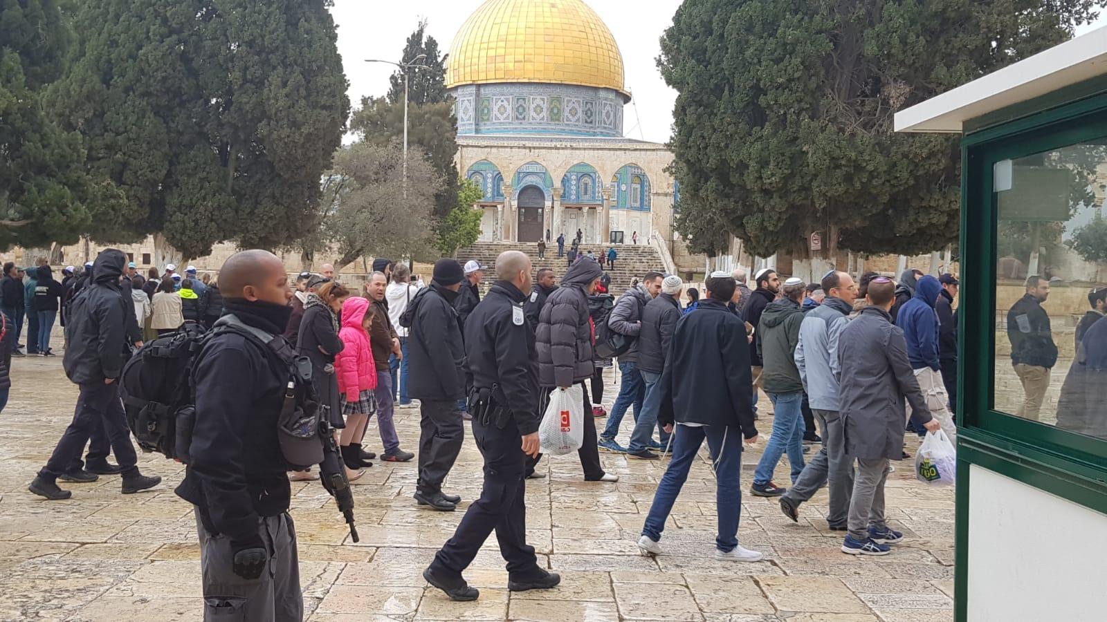 Photo of 135 مستوطنًا اقتحموا الأقصى منذ الصباح