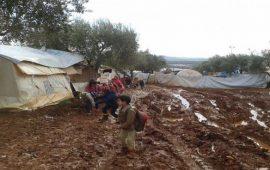 38 ألف نازح بمخيم الهول السوري وسط أوضاع مأسوية