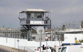 """""""أسرى فلسطين"""": الأوضاع بسجن النقب على حافة الانفجار"""