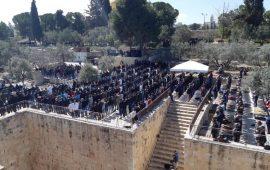 مجلس الأوقاف: لا تفاهمات جديدة بين الأردن والاحتلال الإسرائيلي بشأن مصلى باب الرحمة