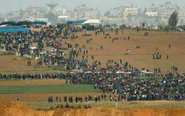شهيد و 42 إصابة خلال قمع الاحتلال للمشاركين في مسيرات العودة