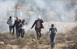 إصابات بالاختناق خلال اعتداء الاحتلال على مدرسة بالخليل