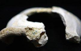 الصين.. العثور على أحافير بشرية تعود لأكثر من 300 ألف عام