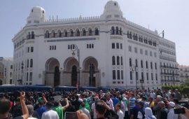 ردا على ابن صالح.. جمعة جديدة من المظاهرت بالجزائر