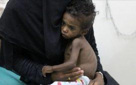 الأمم المتحدة: 5.1 ملايين يمني يعيشون بمناطق يصعب الوصول إليها
