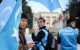الشنقيطي: دعم الإمارات للصين ضد مسلمي الأويغور طعنة بالظهر