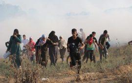 """بتسيلم"""": قنابل الغاز قتلت وجرحت الآلاف على حدود غزة"""