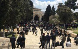 إصابة العشرات بالأقصى.. والمصلون يمنعون المستوطنين من تدنيسه
