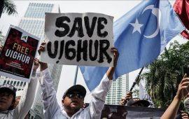 تقرير: الصين تتربح من عمالة السخرة في تركستان الشرقية