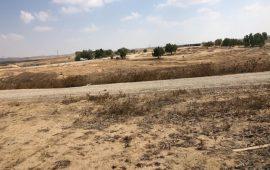 للمرة 160: اقتحام قرية العراقيب وهدم مساكنها