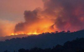 أستراليا تعلن حالة الطوارئ في ولايتين بسبب الحرائق