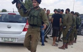 إصابة 3 مستوطنين بعملية طعن قرب قلقيلية