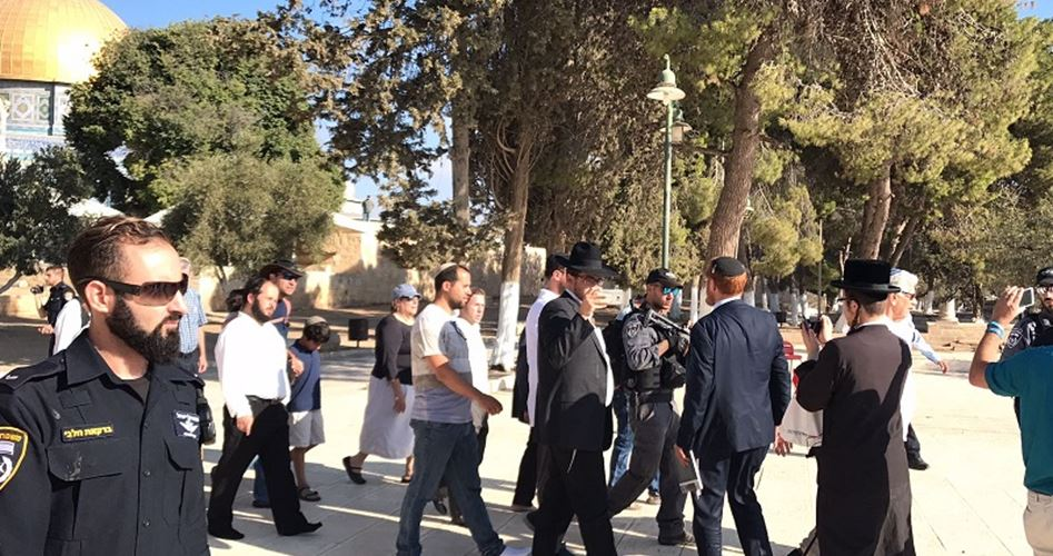 Photo of زيادة وتيرة انتهاكات الاحتلال في القدس خلال أكتوبر
