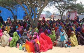 الأمم المتحدة: إجلاء 114 لاجئا صوماليا من اليمن إلى بلادهم
