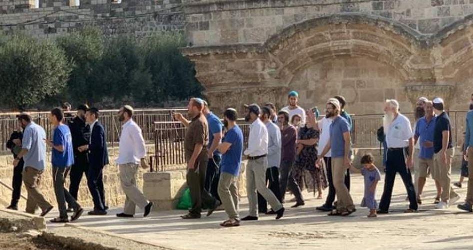 152 إسرائيليًّا يقتحمون الأقصى