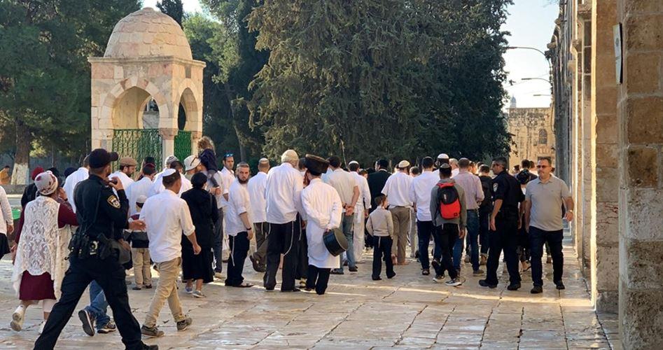 Photo of عشرات المستوطنين يقتحمون المسجد الأقصى