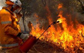 آلاف الأستراليين يفرون إلى الشواطئ هرباً من حرائق الغابات