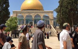 الأردن يُدين استمرار انتهاكات الاحتلال بحق الأقصى