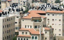 الاحتلال يعقد جلسة محاكمة للأسيرة أماني الحشيم