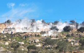 93 إصابة في مواجهات مع الاحتلال بالضفة
