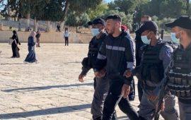 الاحتلال اعتقل أكثر من 750 مقدسيًا منذ بداية 2020