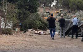يافة الناصرة: اقتلاع أشجار زيتون وهدم حظيرة أغنام