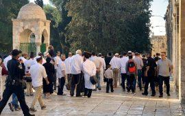 متطرفون يهود وعناصر مخابرات يقتحمون ساحات الأقصى