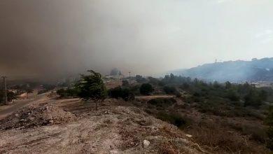 Photo of وادي عارة: حريق في منطقة مفتوحة بأم القطف