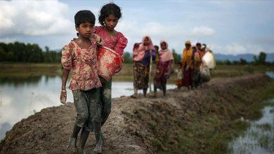 Photo of أمنيستي تكشف عن أدلة جديدة لضحايا الروهنغيا في ميانمار